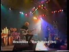 Brainbox Dark Rose live