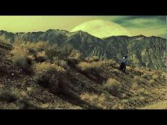 CALIFORNIA POPPY | DAVID DOUGLAS official video